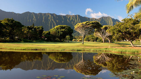Olomana Golf Links on a sunny late afternoon