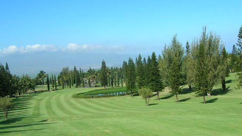Pukalani Country Club Fairway