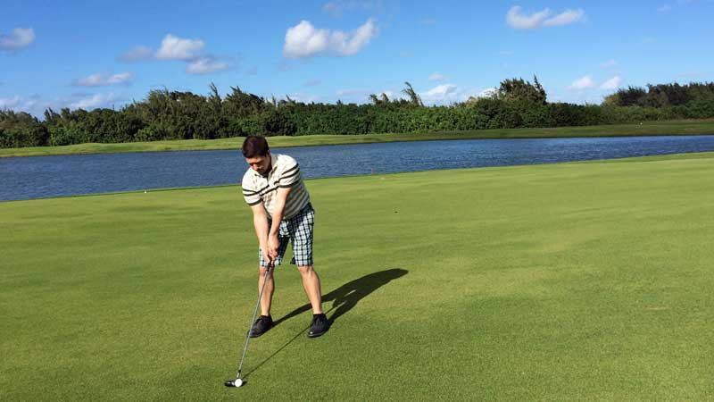 Fairway Turtle Bay Palmer Course