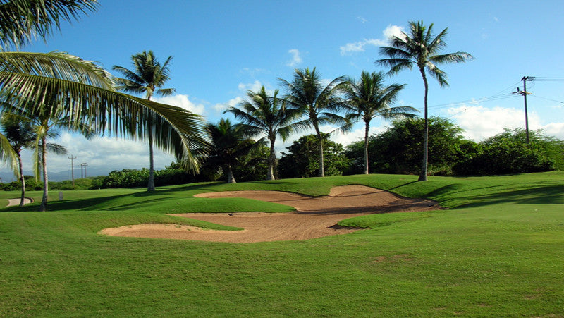 Hawaii Prince Golf Club sand trap