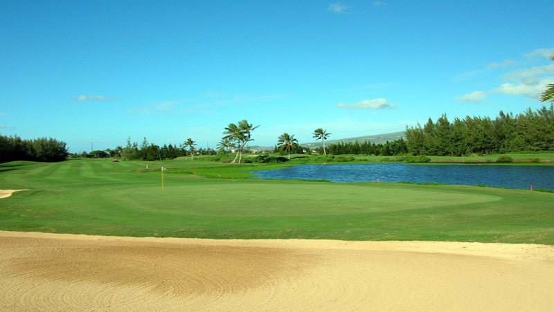 Hawaii Prince Golf Club course