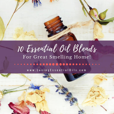 10 Essential Oil Blends For A Great Smelling Home