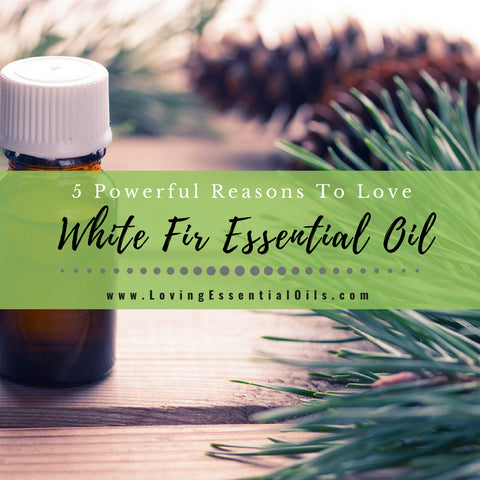 5 Powerful Reasons To Love White Fir Essential Oil