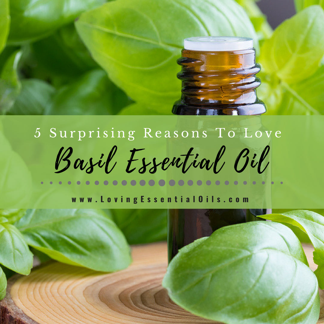 Basil Essential Oil Uses And Benefits With Diffuser Blends Diy Recipes