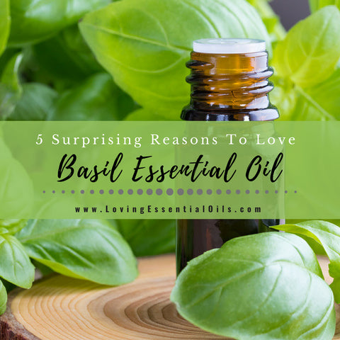 Basil Essential Oil Uses and Benefits with Diffuser Blends & DIY Recipes