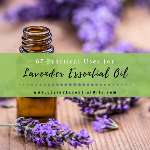 67 Practical Uses for Lavender Essential Oil