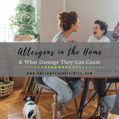 Allergens in the Home & What Damage They Can Cause