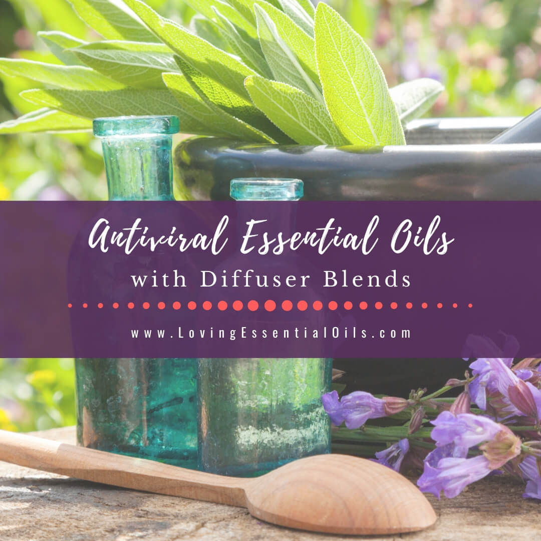 Antiviral Essential Oils to Diffuse with 5 Diffuser Blend Recipes