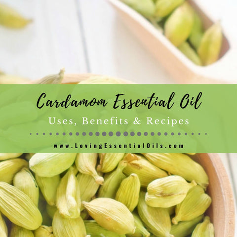 Cardamom Essential Oil Uses, Benefits & Recipes - Free Guide