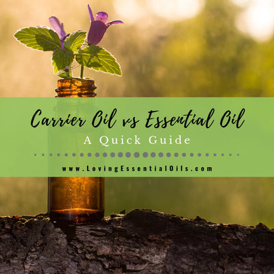 Carrier Oil vs Essential Oil - A Quick Guide