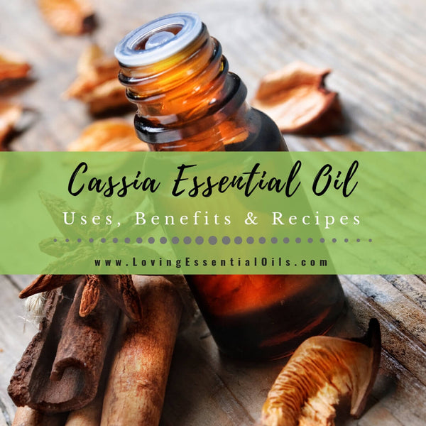Cassia Essential Oil Uses, Benefits & Recipes - EO Spotlight