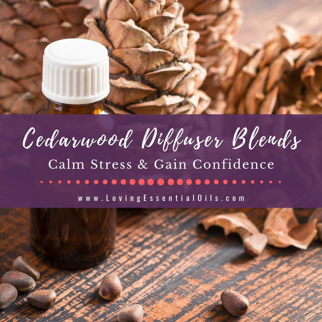10 Cedarwood Diffuser Blends - Calm Stress and Gain Confidence