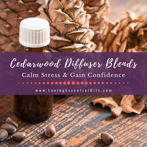 Cedarwood Diffuser Blends - 10 Woody Essential Oil Recipes