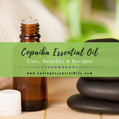 Copaiba Essential Oil Uses, Benefits & Recipes - EO Spotlight