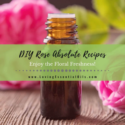 10 Rose Absolute Essential Oil Recipes - DIY Aromatherapy Blends