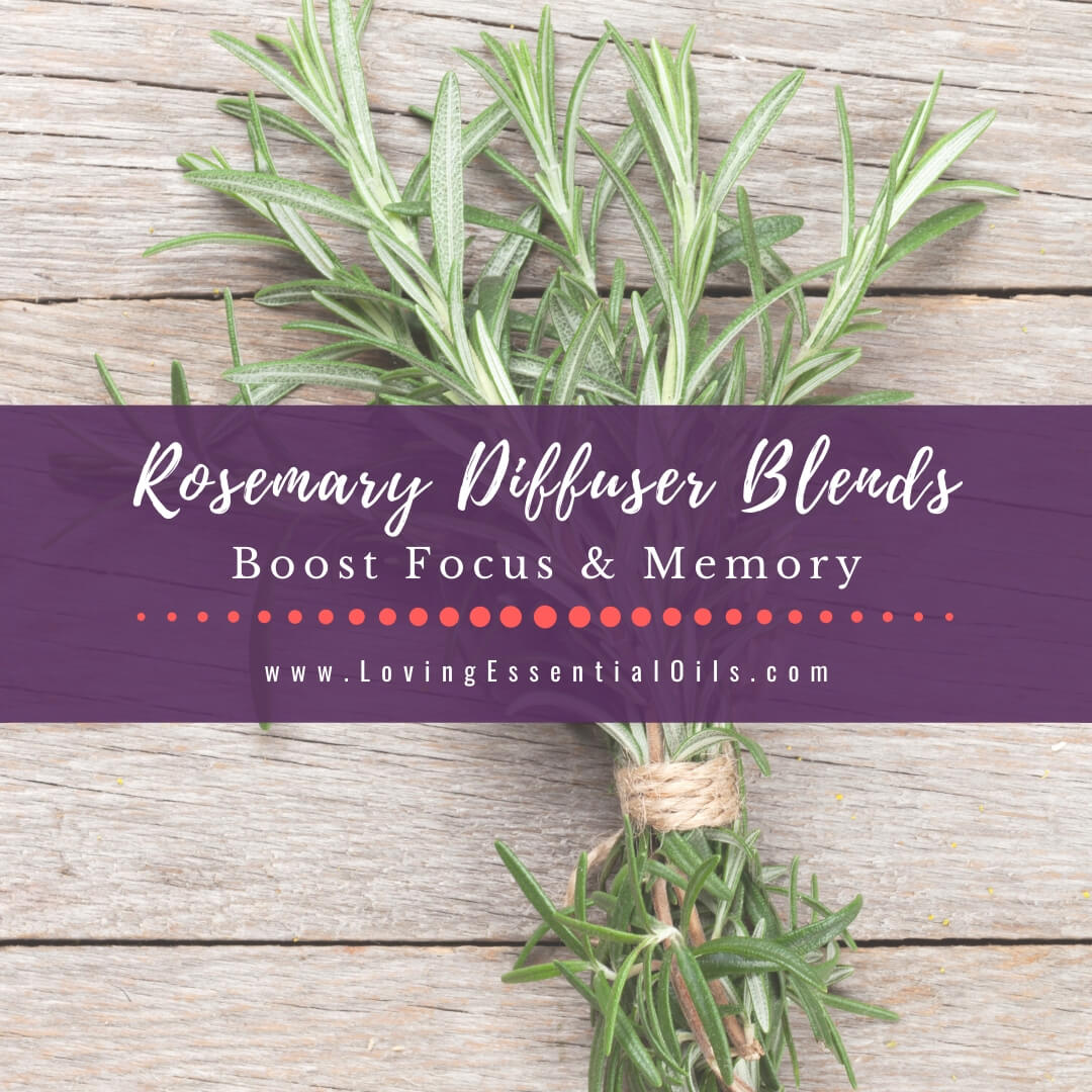 Rosemary Diffuser Blends - 10 Refreshing Essential Oil Recipes