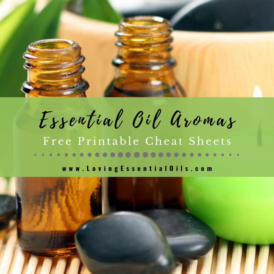 Essential Oil Aromas - Free Printable Cheat Sheet
