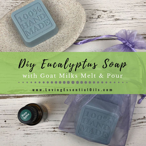 DIY Eucalyptus Soap Recipe - Essential Oil Melt and Pour