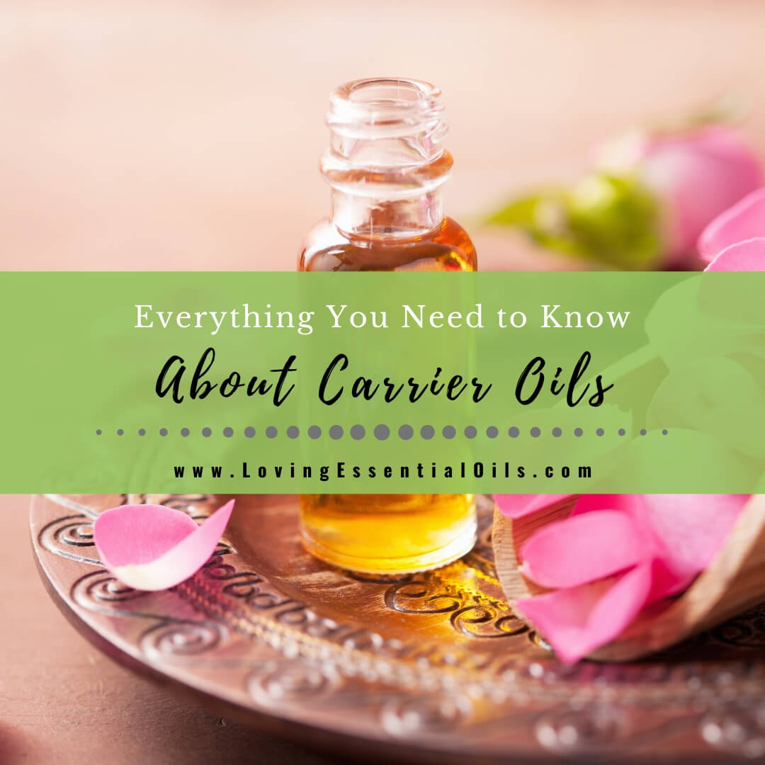 Everything You Need to Know About Carrier Oils - Free PDF Guide