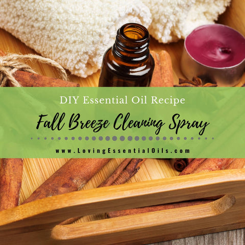 Fall Breeze Essential Oil Cleaning Spray Recipe For Your Home