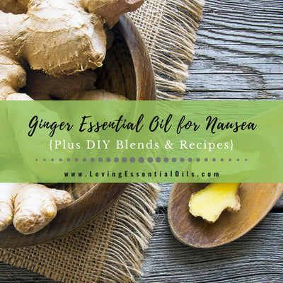 Ginger Essential Oil for Nausea Plus DIY Blends & Recipes