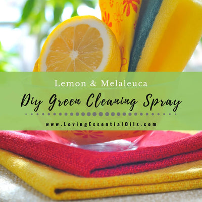 Lemon Melaleuca Non-toxic Green Essential Oil Cleaning Spray Recipe