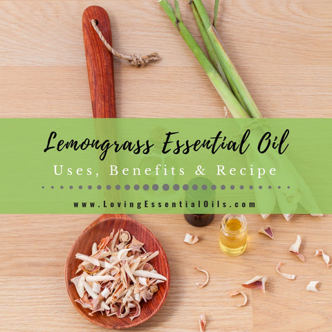 Lemongrass Essential Oil Uses, Benefits & Recipes - EO Spotlight