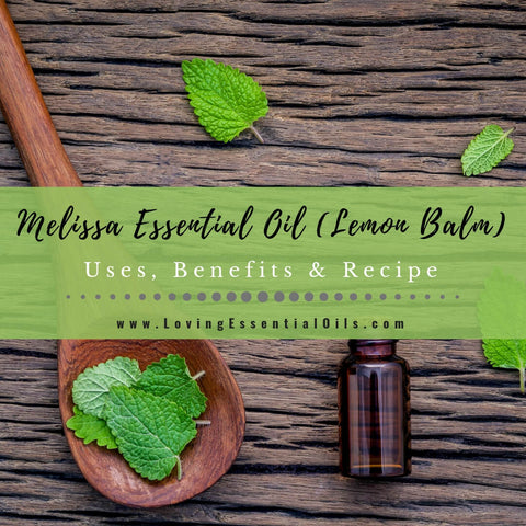 Melissa Essential Oil Benefits, Uses & Recipes - EO Spotlight
