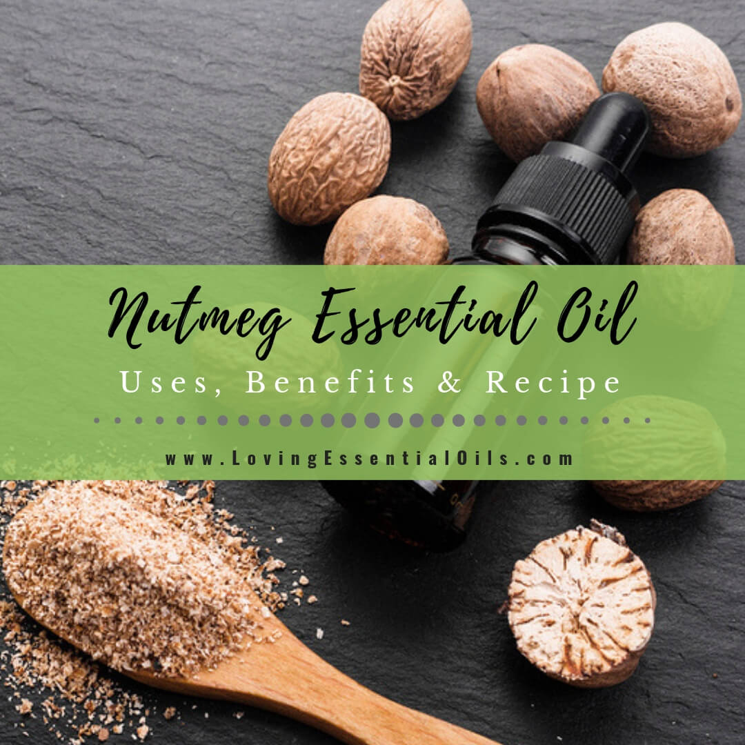 Nutmeg Essential Oil Uses, Benefits & Recipes - EO Spotlight