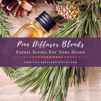 Pine Diffuser Blends - Forest Fresh Essential Oil Scents For Your Home