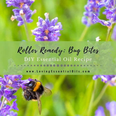 How to Make an Essential Oil Recipe for Bug Bites {Roller Blend}