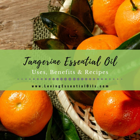 Tangerine Essential Oil Uses, Benefits & Recipes - EO Spotlight