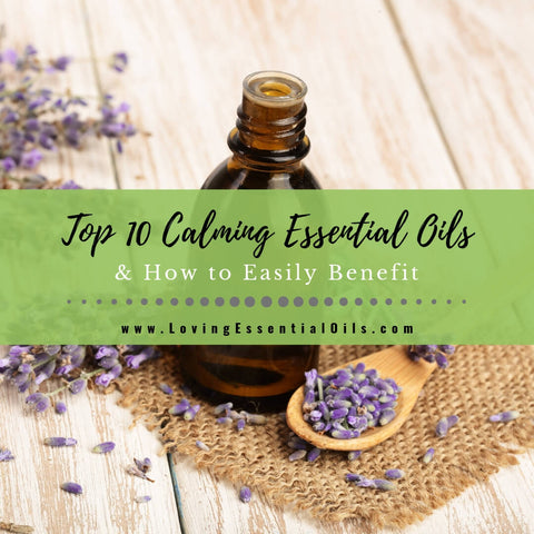 10 Best Calming Essential Oils for Anxiety with DIY Diffuser Blend