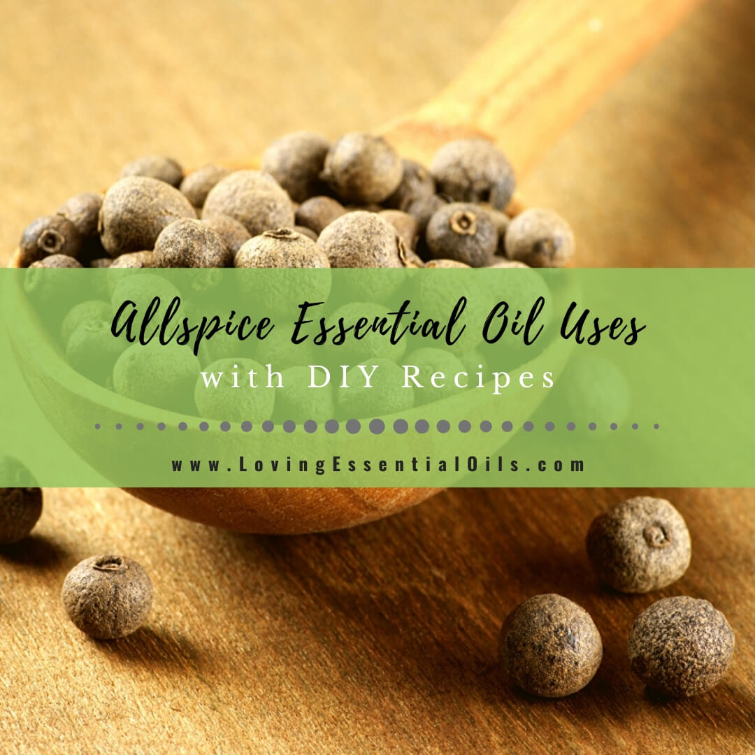 Allspice Essential Oil Recipes and Uses {EO Spotlight}