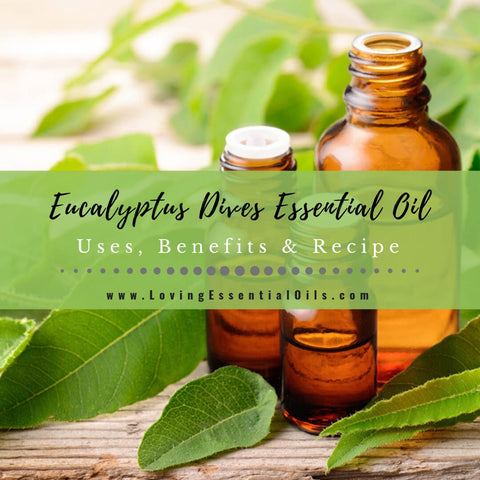 Eucalyptus Dives Uses, Benefits & Recipes (aka Peppermint Eucalyptus)