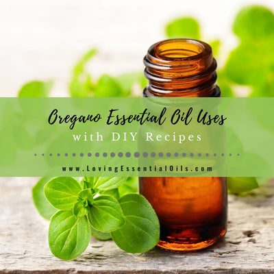 Oregano Essential Oil Recipes, Uses and Benefits - EO Spotlight