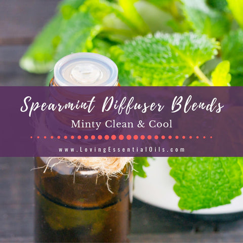 Spearmint Diffuser Blends - 10 Minty Clean Essential Oil Recipes