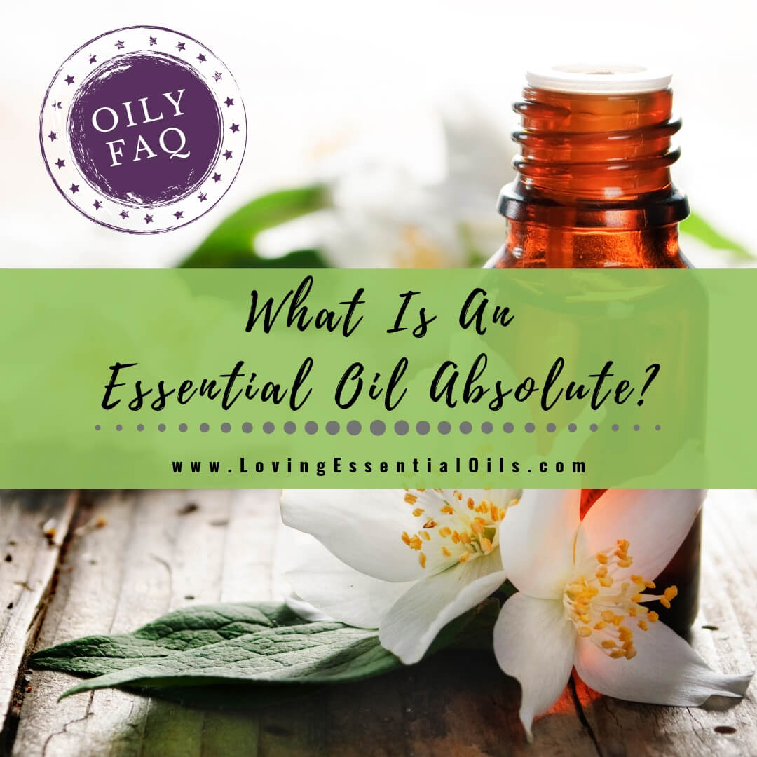 What Is An Essential Oil Absolute? - Oily FAQ