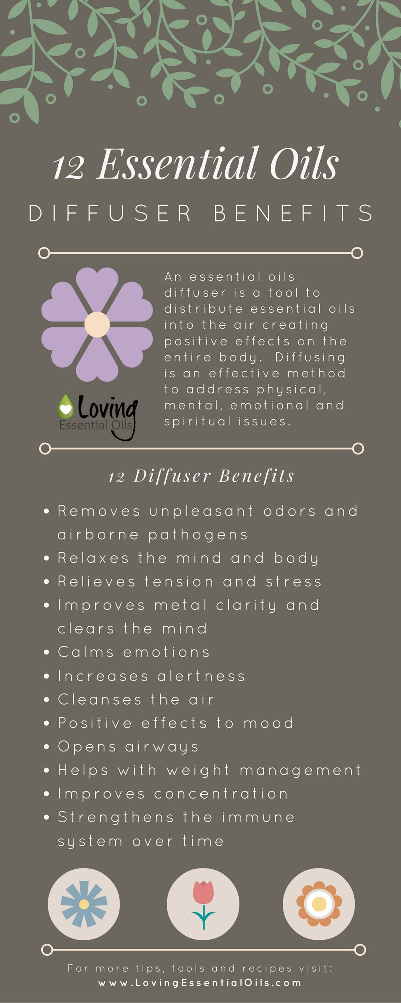 12 Essential Oils Diffuser Benefits Infographic