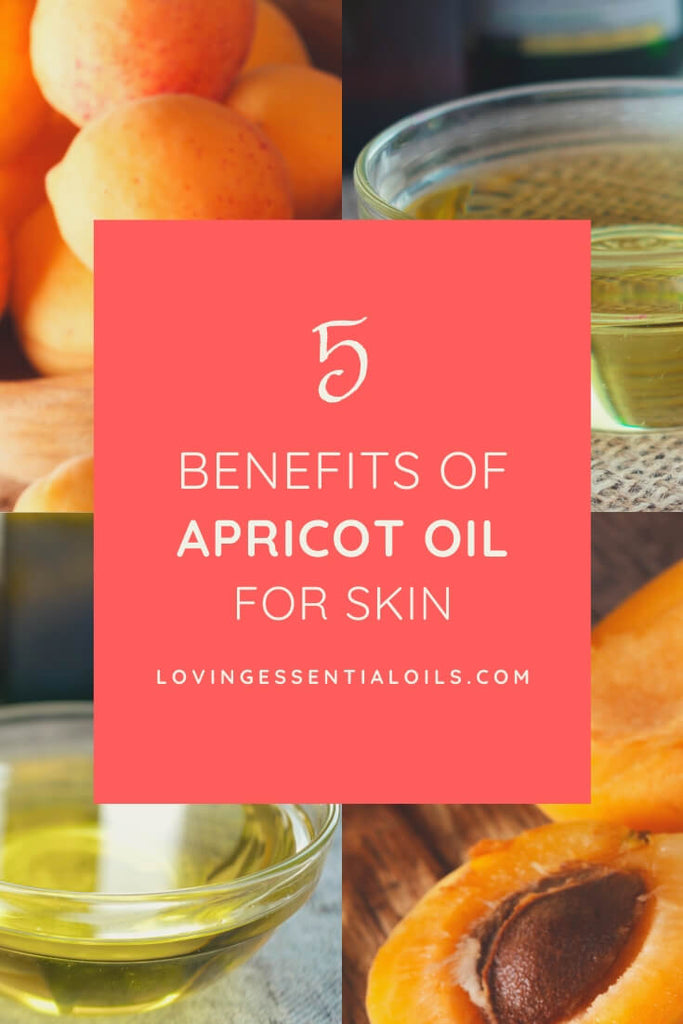 5 Benefits of Apricot Carrier Oil for Skin - Carrier Oil Spotlight