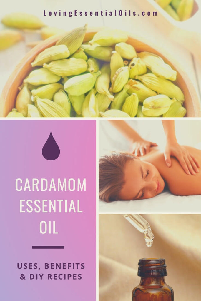 Cardamom Essential Oil Uses, Benefits & Recipes by Loving Essential Oils