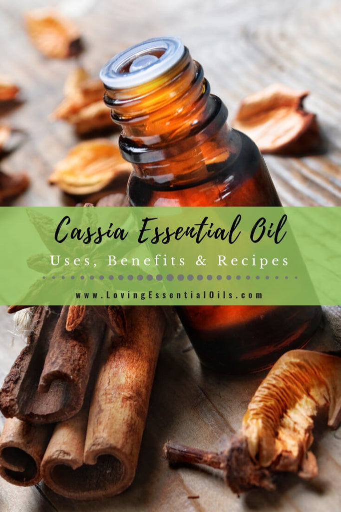 Cassia Essential Oil Uses, Benefits & Recipes - EO Spotlight by Loving Essential Oils | Cassia Diffuser Blends
