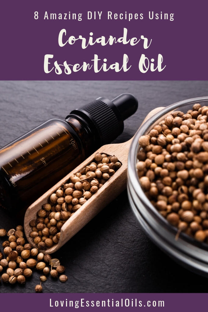 8 Amazing DIY Recipes Using Coriander Essential Oil by Loving Essential Oils