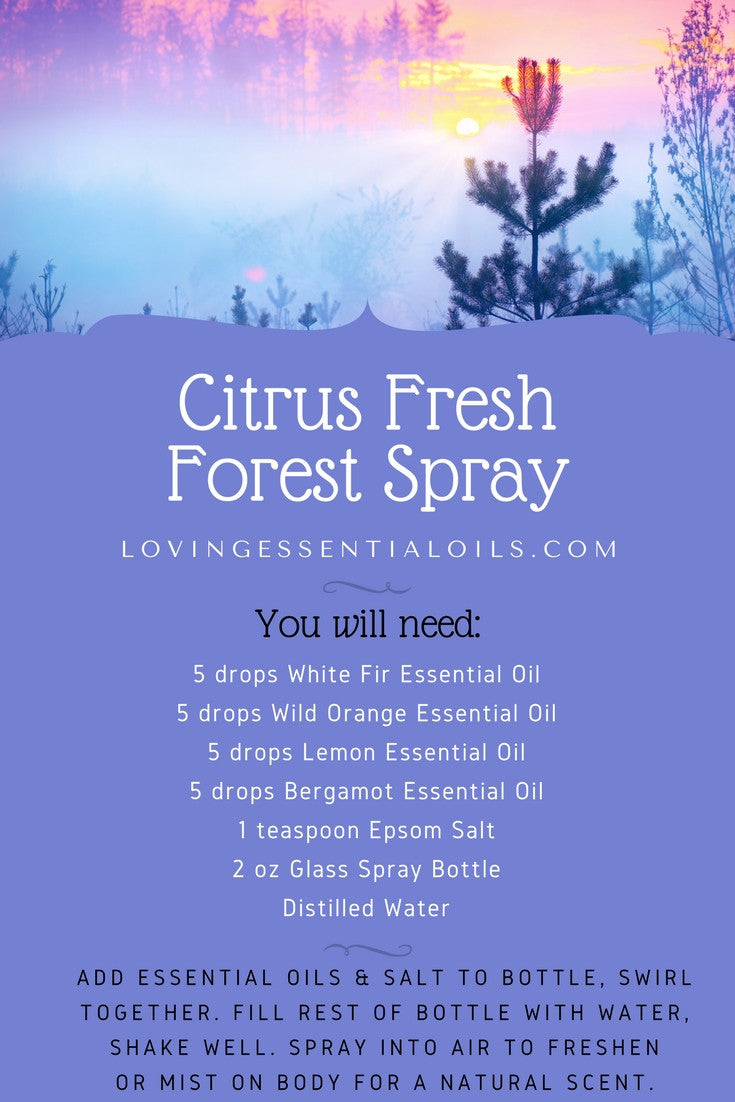 DIY Citrus Fresh Forest Essential Oil Room Spray Recipe