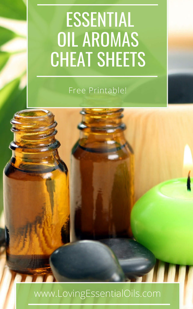 Essential Oil Aromas - Free Printable Cheat Sheet by Loving Essential Oils