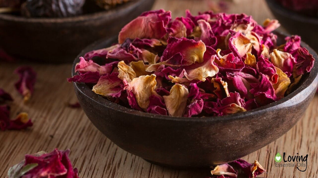 Essential Oil Potpourri with Rose Petals DIY Recipe by Loving Essential Oils | Learn all about essential oils for potpourri