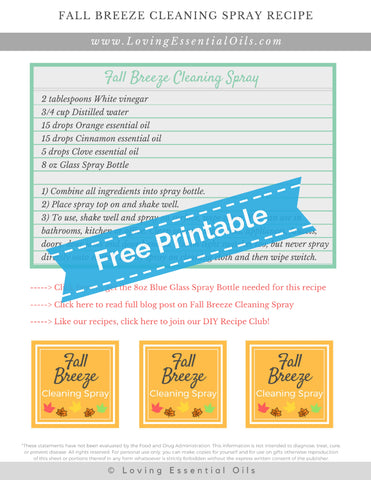 #17 Fall Breeze Cleaning Spray Recipe