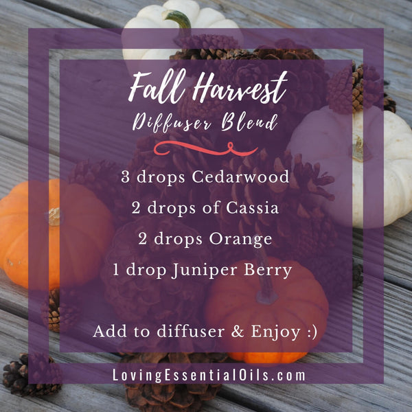10 Fall Diffuser Blends - Wonderful Scents of the Season! by Loving Essential Oils | Fall harvest with cedarwood, cassia, orange, juniper berry