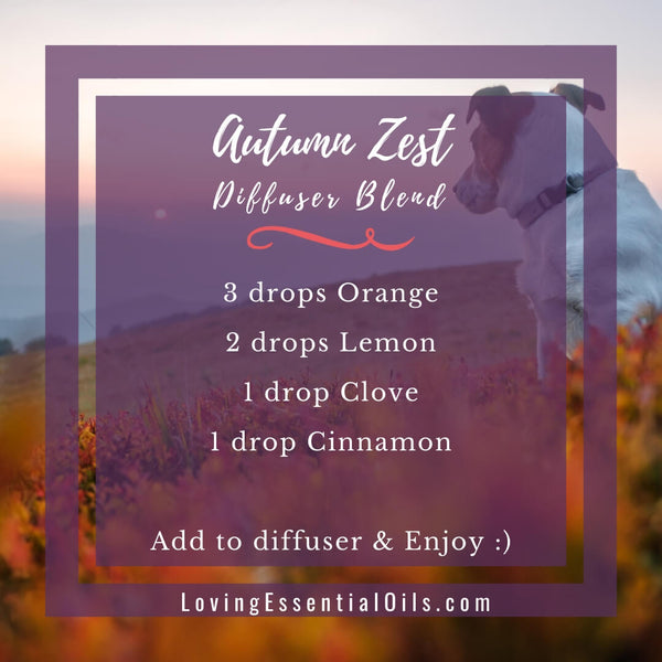 10 Fall Diffuser Blends - Wonderful Scents of the Season! by Loving Essential Oils | Autumn Zest with orange, lemon, clove , cinnamon