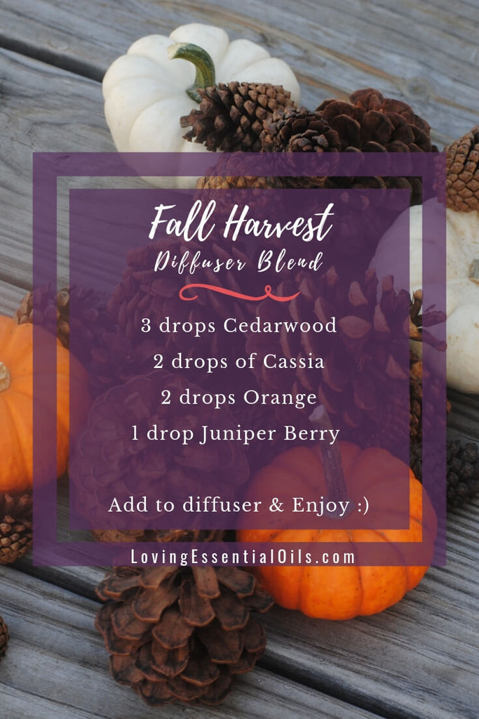 Fall Harvest - Diffuser Recipes For Fall by Loving Essential Oils with cedarwood, cassia, orange and juniper berry essential oils